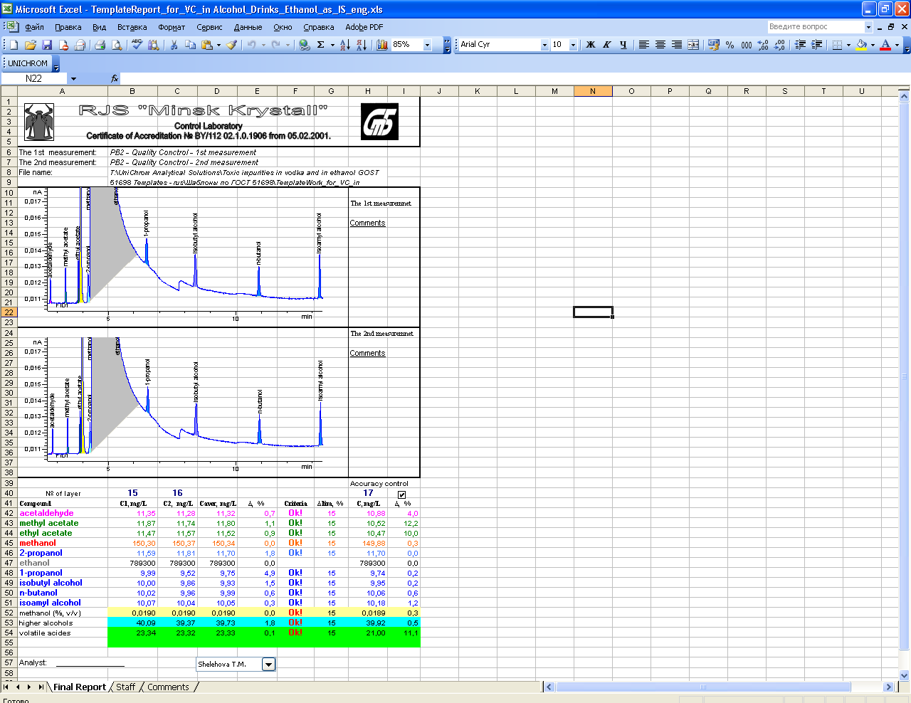 construction daily report template excel .